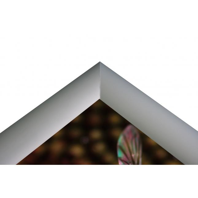 Snap Frame Poster Display frame close up