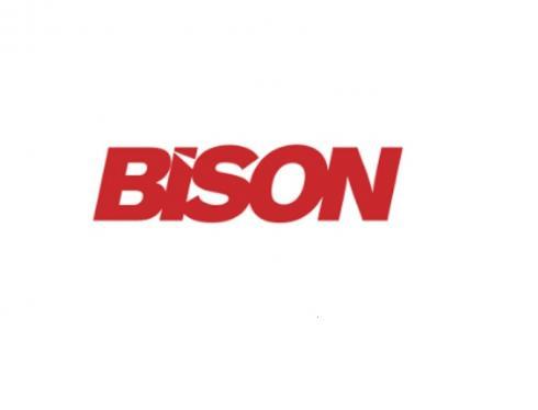 Bison Frames Logo