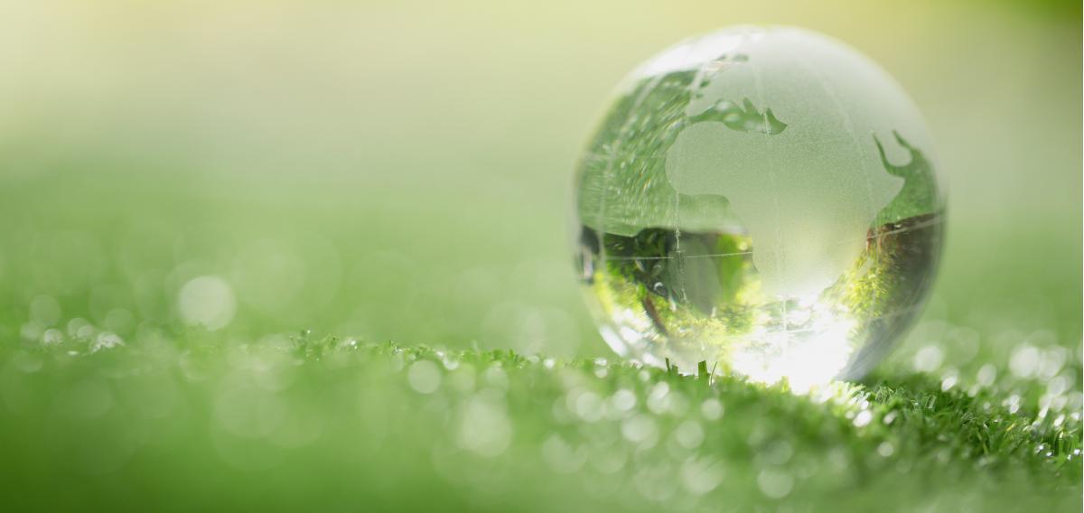 Environmental & Sustainability Policy